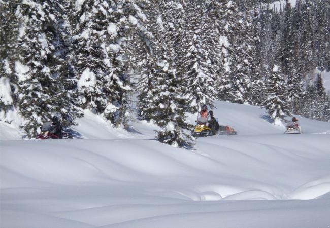 Фотогалерея: Сафари на снегоходах по отрогам хребтов Юго-Западного Алтая. 2019