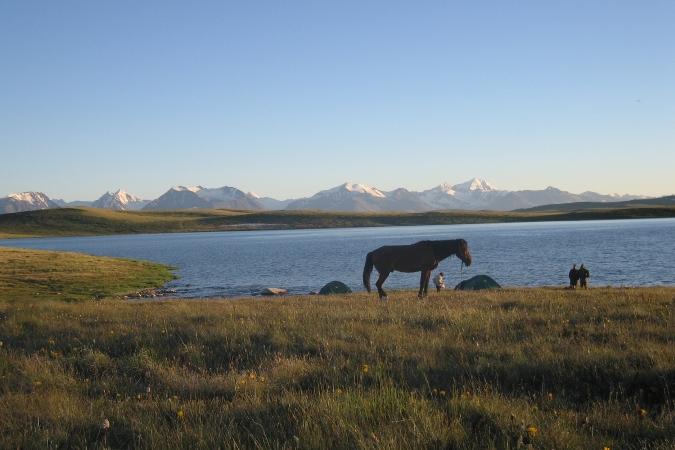 Фотогалерея: Конное путешествие на плато Укок с авто-сопровождением. Лето 2019