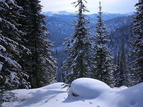 Фотогалерея: Тропою снежного барса. 2019г.