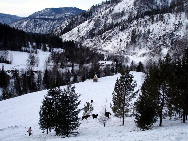 Фотогалерея: Зимнее солнце Алтая (конный).Осень-Зима 2019