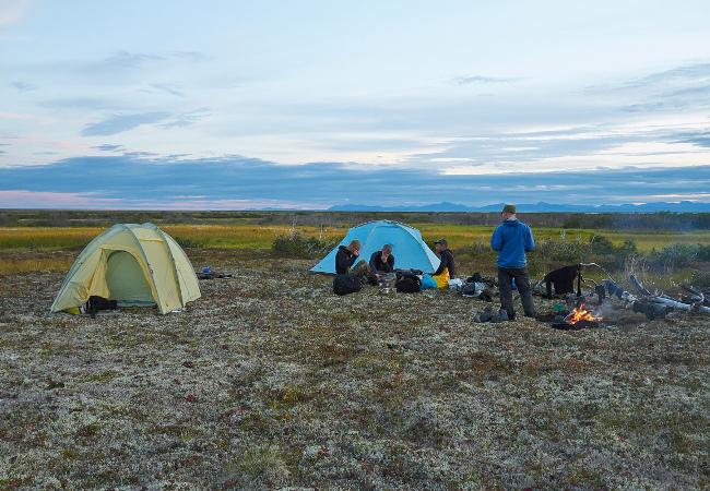 Фотогалерея: Щука и Нельма. Рыбалка на Чукотке. Анадырь, Великая, озеро Красное.