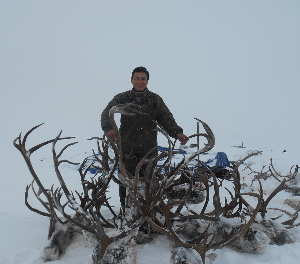 Фотогалерея: Охота на дикого ОЛЕНЯ. Лось, Медведь и Снежный баран 2017г.