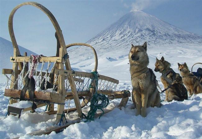 Фотогалерея: Термальные источники и вулканы Камчатки. 2019г.