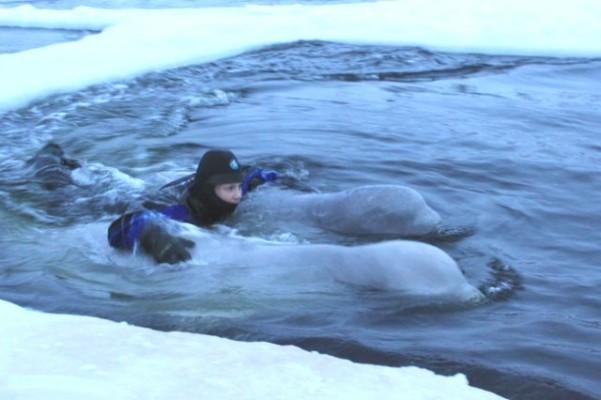 Фотогалерея: Празднование Нового года 2018 на Белом море у  Северного Полярного круга