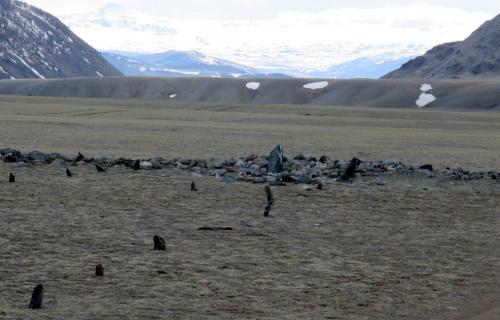 Фотогалерея: Экспедиция в Монголию. 2018г.