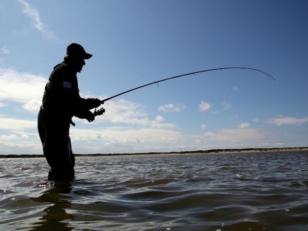 Фотогалерея: Погоня за тайменем. Рыбалка на морских заливах Сахалина.
