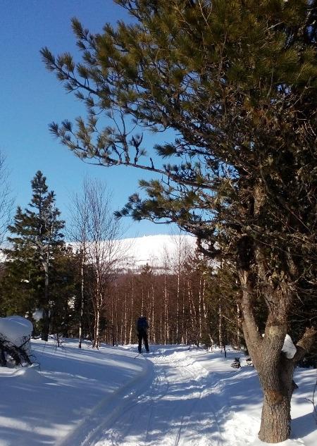 Фотогалерея: На санях и лыжах к перевалу Дятлова