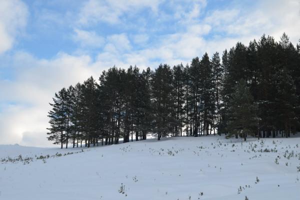 Фотогалерея: Снежный Крака - 6 дней. 2018-2019