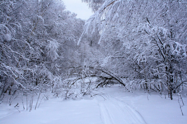 Фотогалерея: Уральские перевалы. Зима 2018
